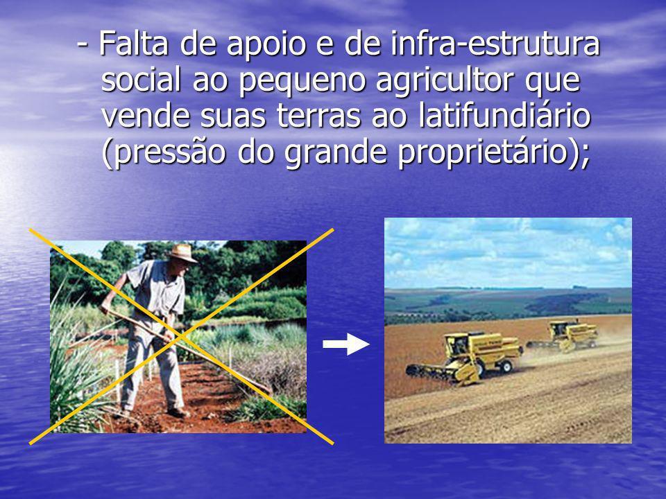 - Falta de apoio e de infra-estrutura social ao pequeno agricultor que vende suas terras ao latifundiário (pressão do grande proprietário);