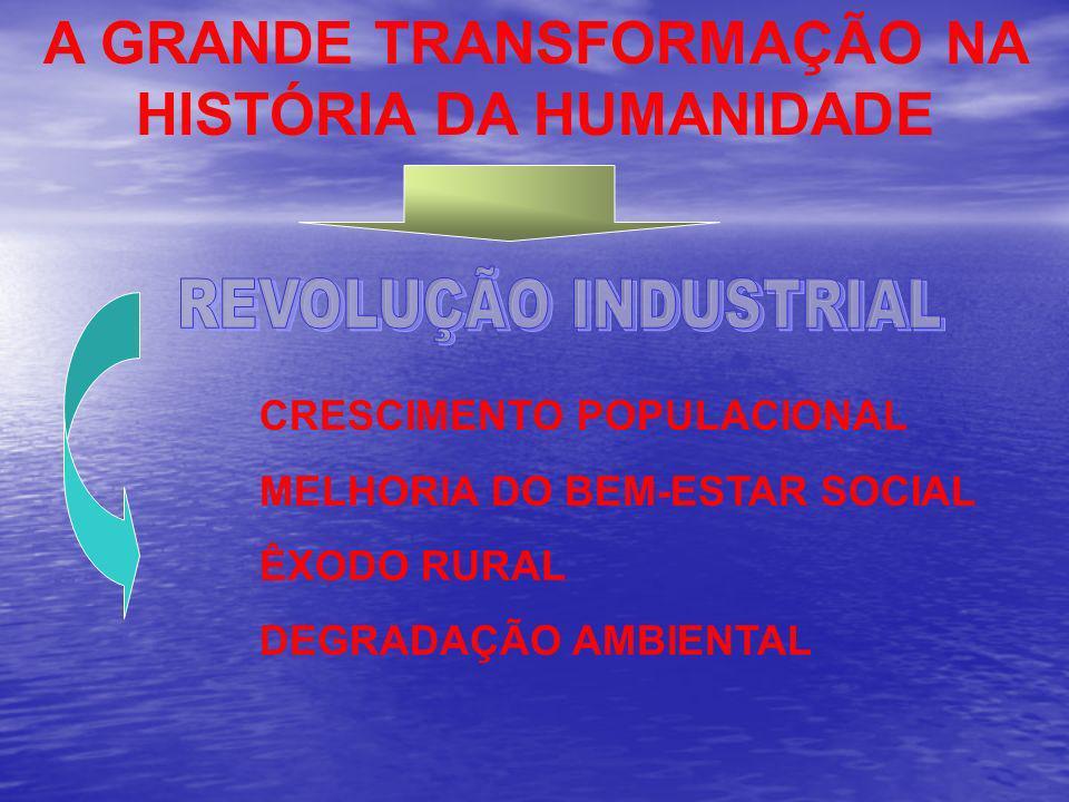 A GRANDE TRANSFORMAÇÃO NA HISTÓRIA DA HUMANIDADE