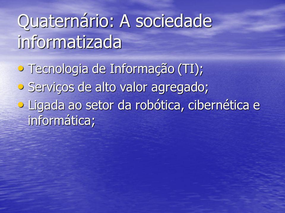 Quaternário: A sociedade informatizada