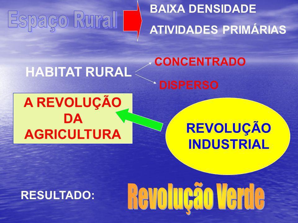 A REVOLUÇÃO DA AGRICULTURA