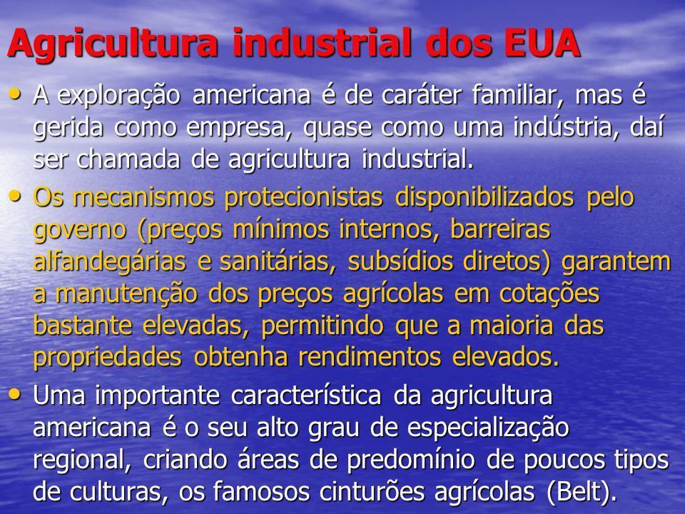 Agricultura industrial dos EUA