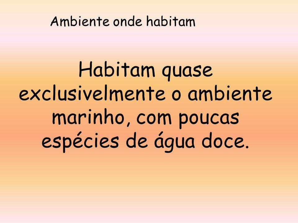Ambiente onde habitam Habitam quase exclusivelmente o ambiente marinho, com poucas espécies de água doce.