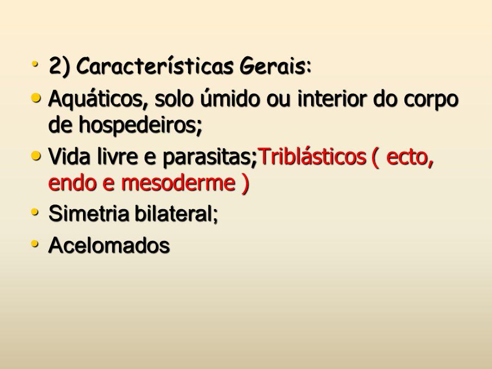 2) Características Gerais: