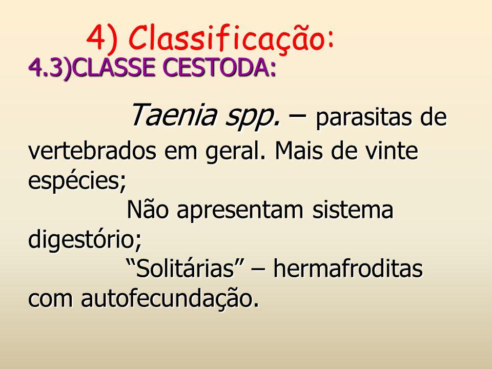 4) Classificação: