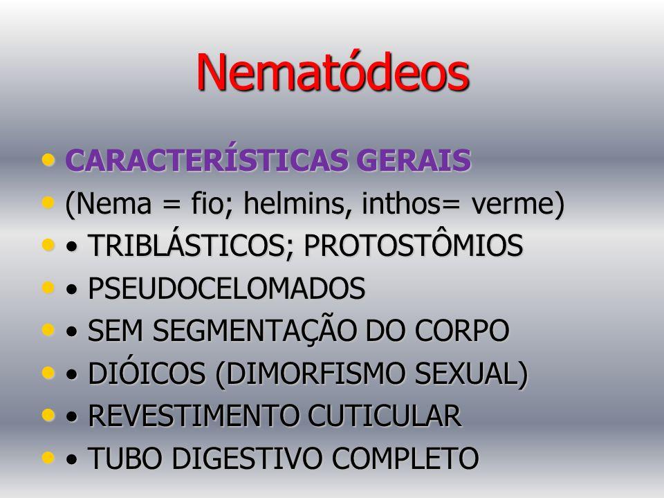 Nematódeos CARACTERÍSTICAS GERAIS (Nema = fio; helmins, inthos= verme)