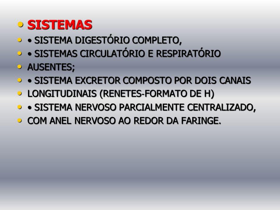 SISTEMAS • SISTEMA DIGESTÓRIO COMPLETO,