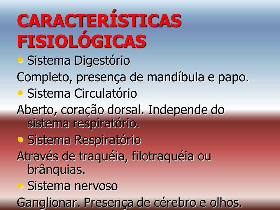 CARACTERÍSTICAS FISIOLÓGICAS