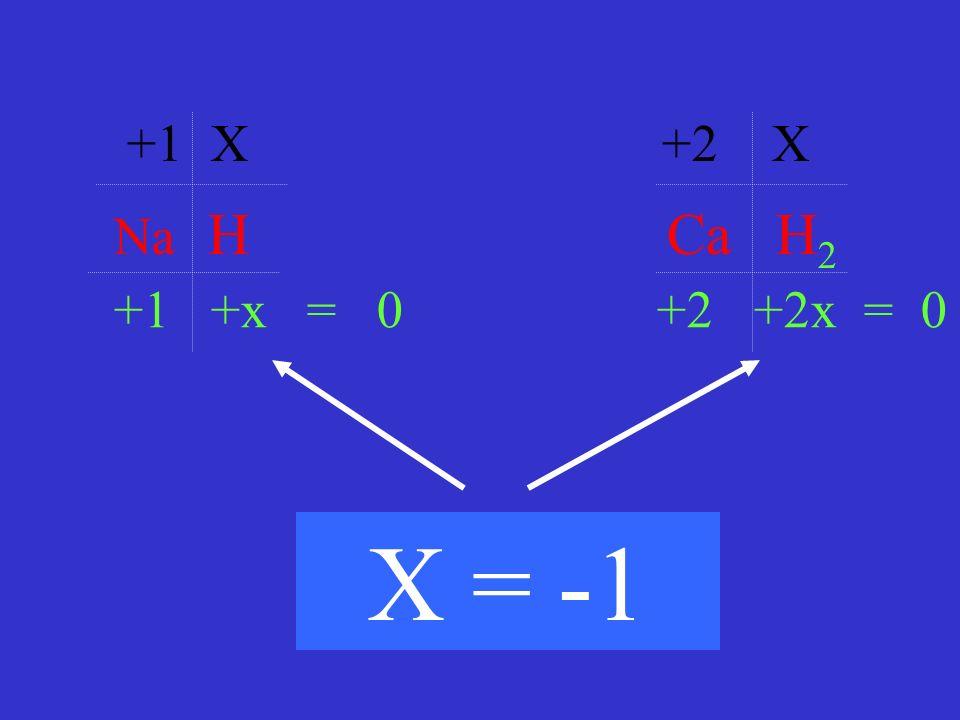 +1 X +2 X Na H Ca H2. +1 +x = 0 +2 +2x = 0.