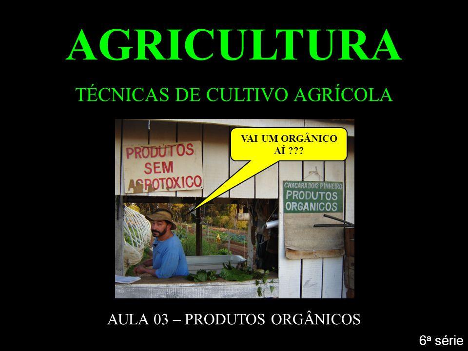 AGRICULTURA TÉCNICAS DE CULTIVO AGRÍCOLA AULA 03 – PRODUTOS ORGÂNICOS