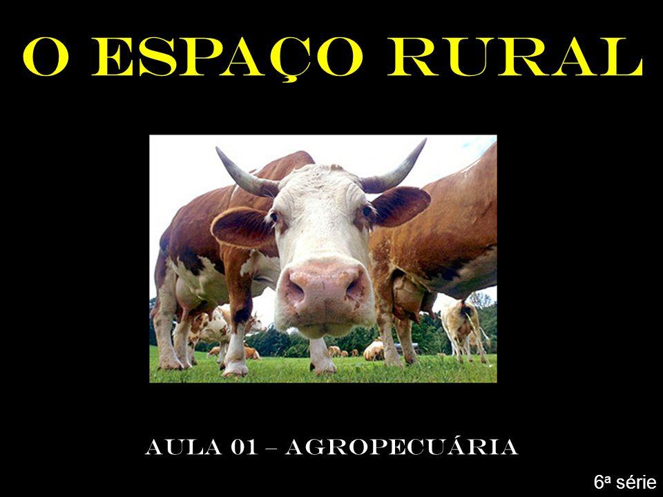 O ESPAÇO RURAL AULA 01 – AGROPECUÁRIA 6a série