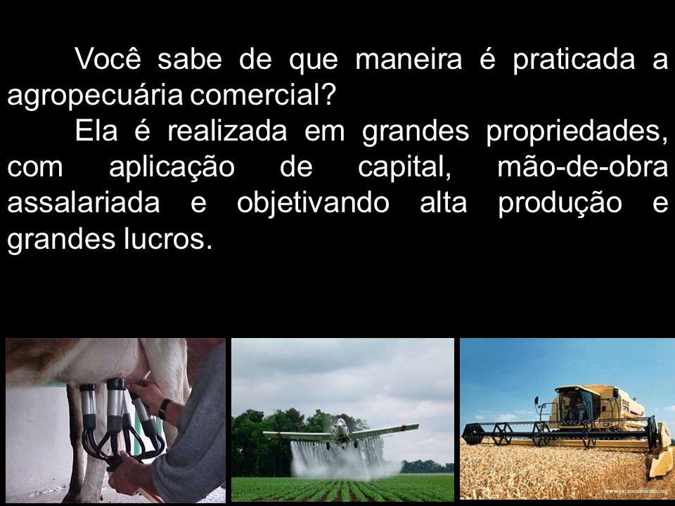 Você sabe de que maneira é praticada a agropecuária comercial
