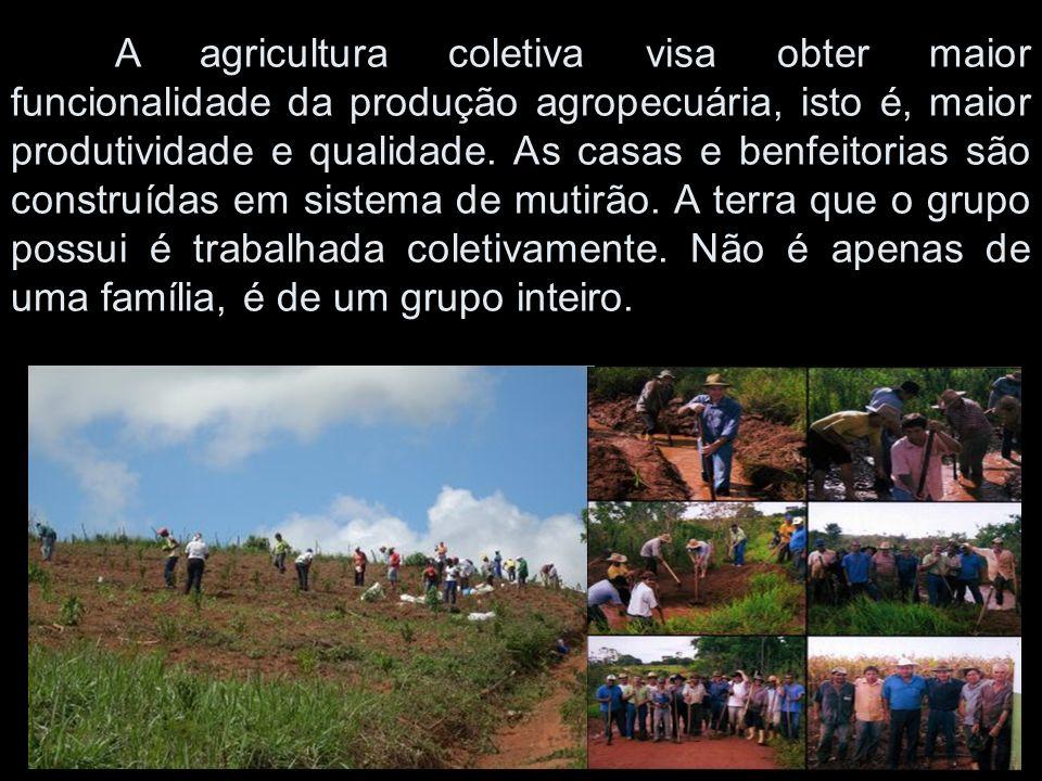 A agricultura coletiva visa obter maior funcionalidade da produção agropecuária, isto é, maior produtividade e qualidade.