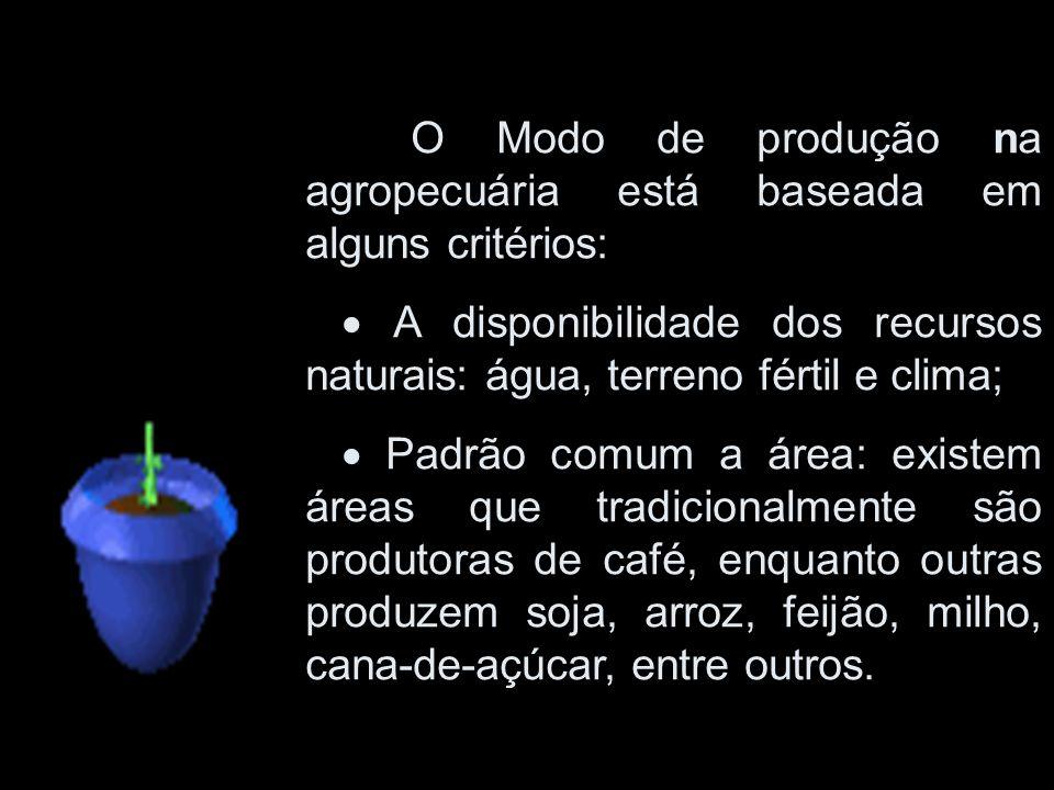 O Modo de produção na agropecuária está baseada em alguns critérios: