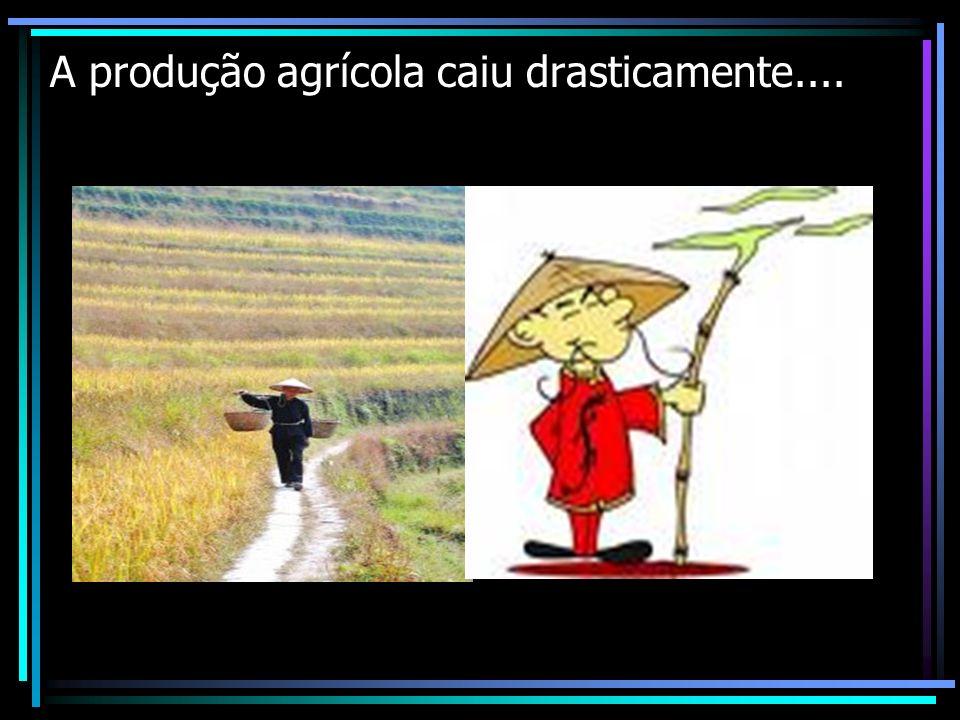 A produção agrícola caiu drasticamente....
