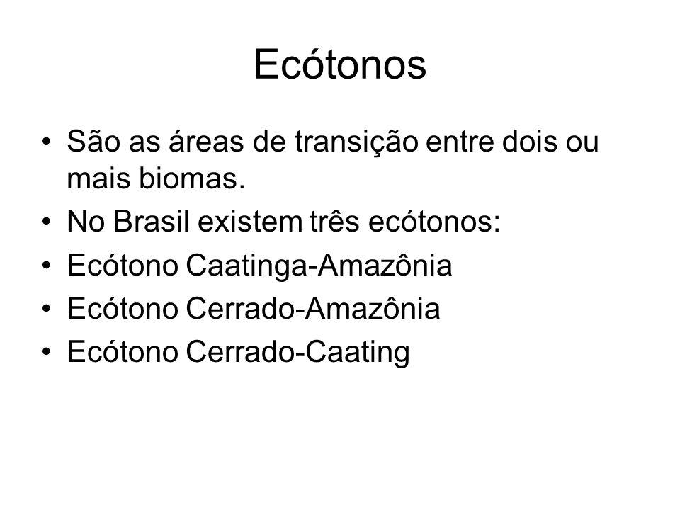 Ecótonos São as áreas de transição entre dois ou mais biomas.