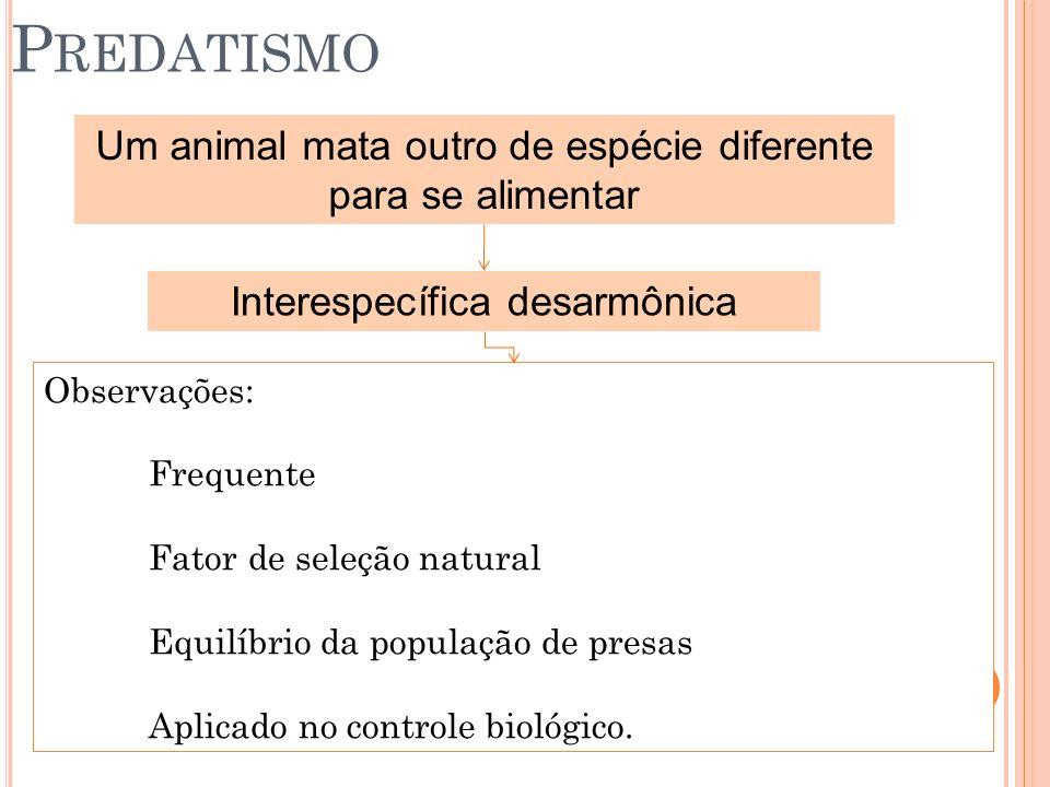 Predatismo Um animal mata outro de espécie diferente para se alimentar