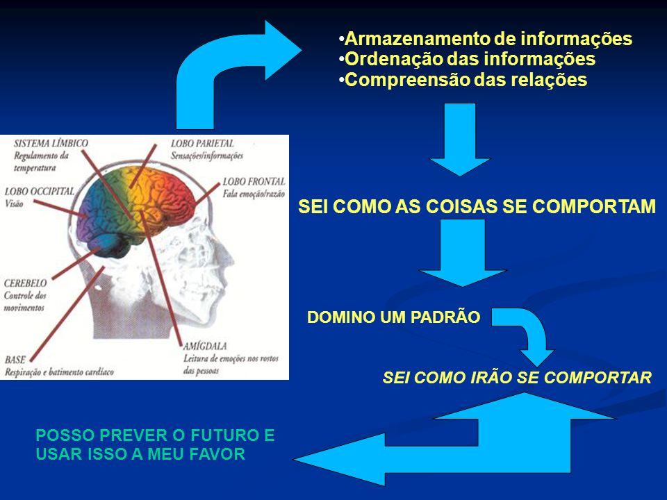 Armazenamento de informações Ordenação das informações