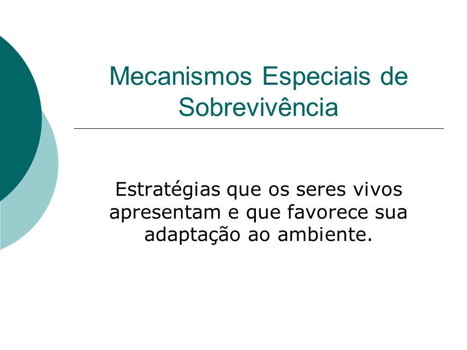 Mecanismos Especiais de Sobrevivência