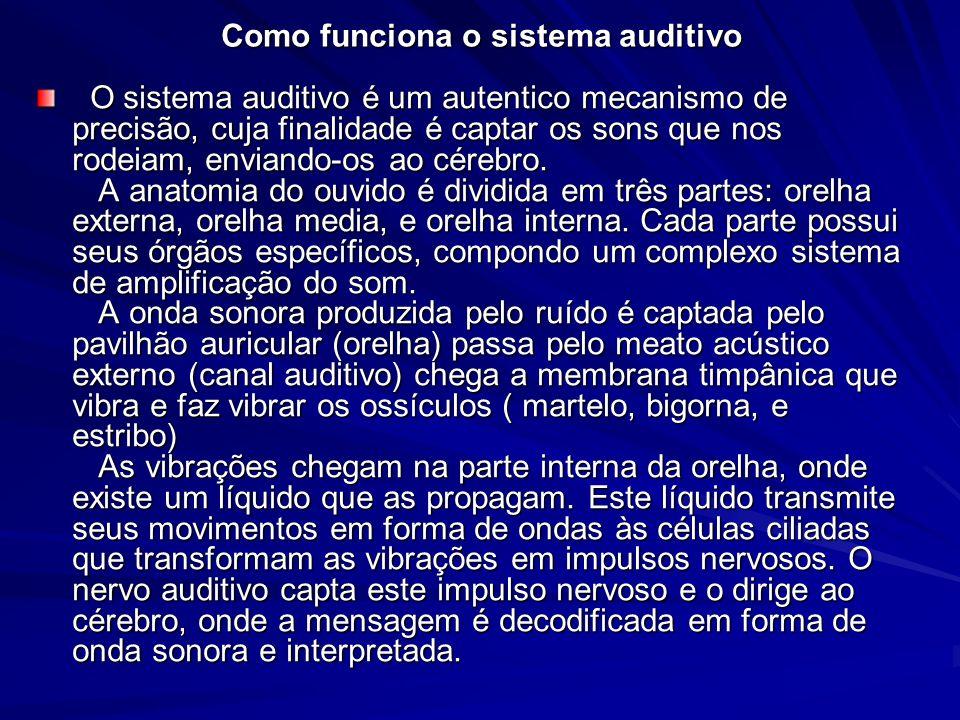 Como funciona o sistema auditivo