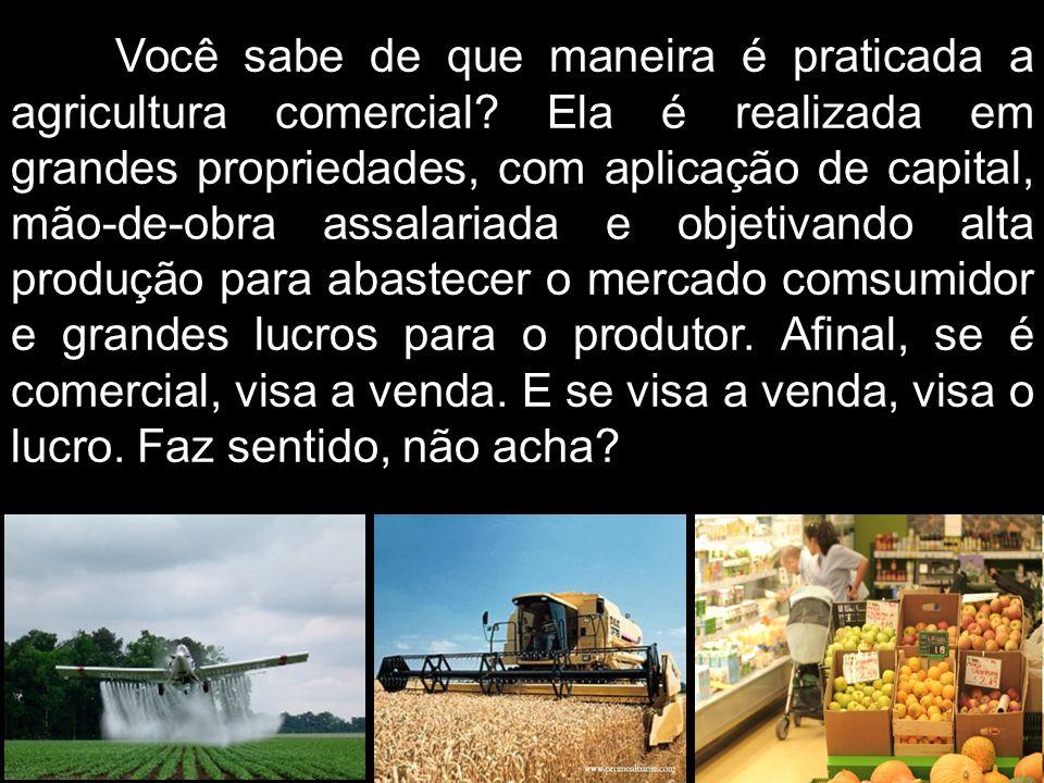 Você sabe de que maneira é praticada a agricultura comercial
