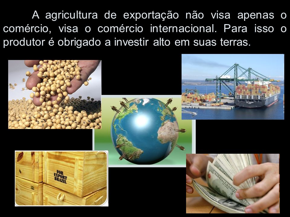 A agricultura de exportação não visa apenas o comércio, visa o comércio internacional.