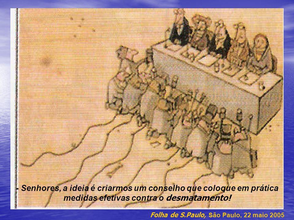 - Senhores, a ideia é criarmos um conselho que coloque em prática medidas efetivas contra o desmatamento!
