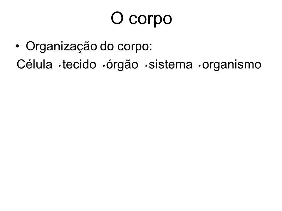 Célula tecido órgão sistema organismo