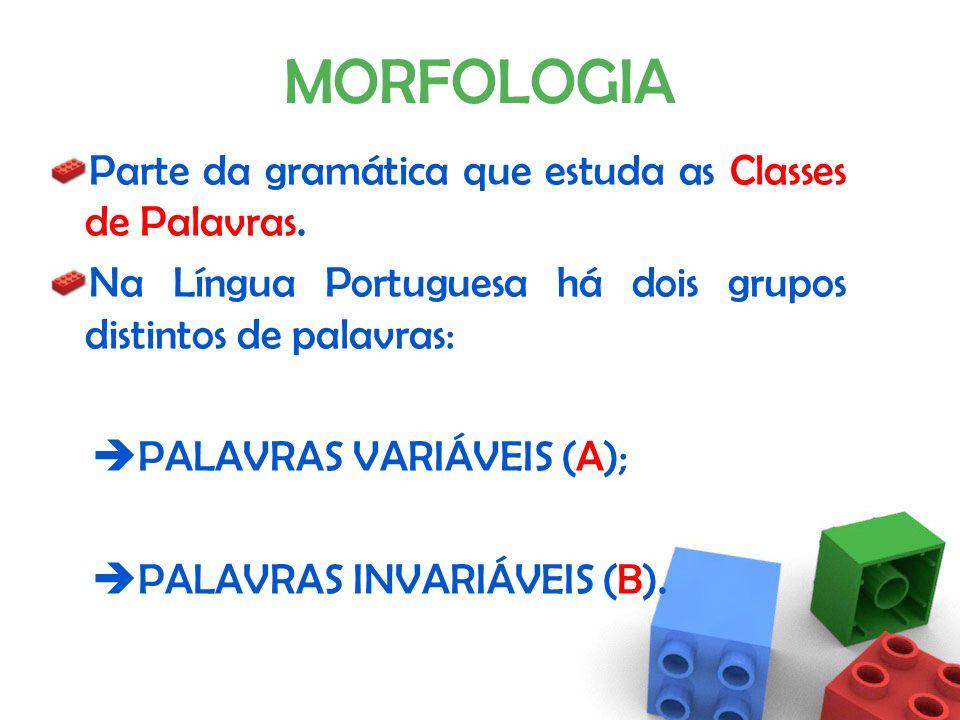 MORFOLOGIA Parte da gramática que estuda as Classes de Palavras.