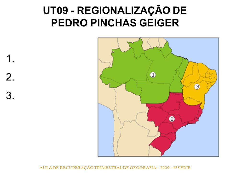 UT09 - REGIONALIZAÇÃO DE PEDRO PINCHAS GEIGER