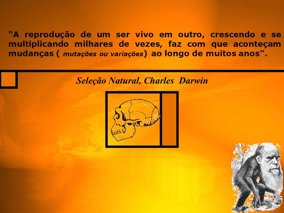Seleção Natural, Charles Darwin