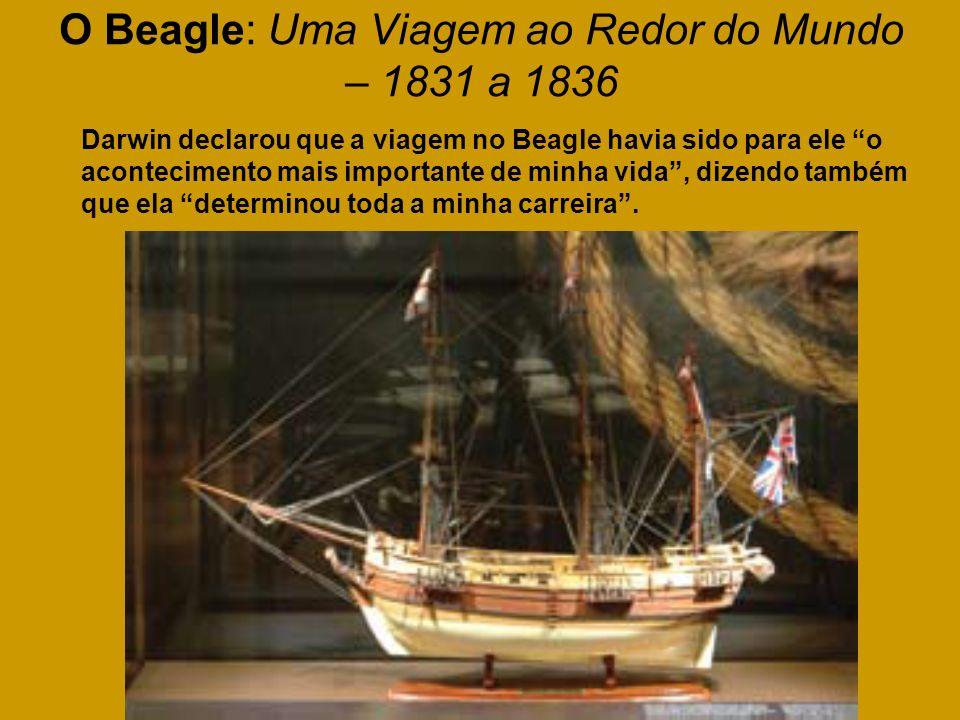 O Beagle: Uma Viagem ao Redor do Mundo – 1831 a 1836