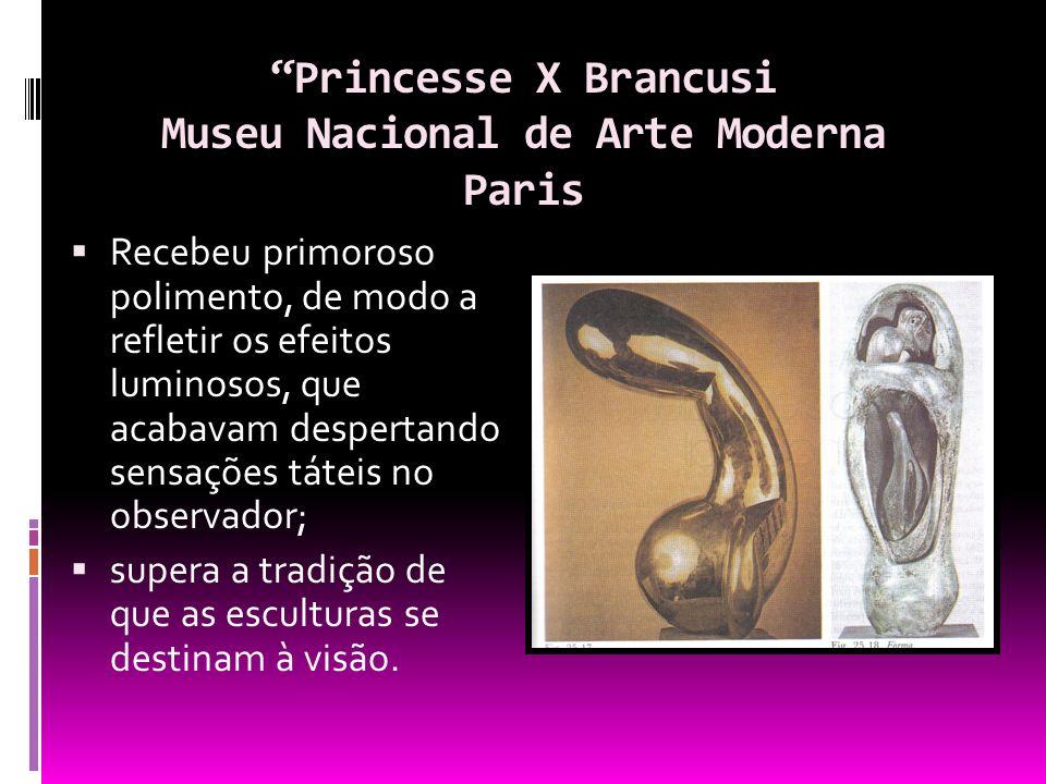 Princesse X Brancusi Museu Nacional de Arte Moderna Paris