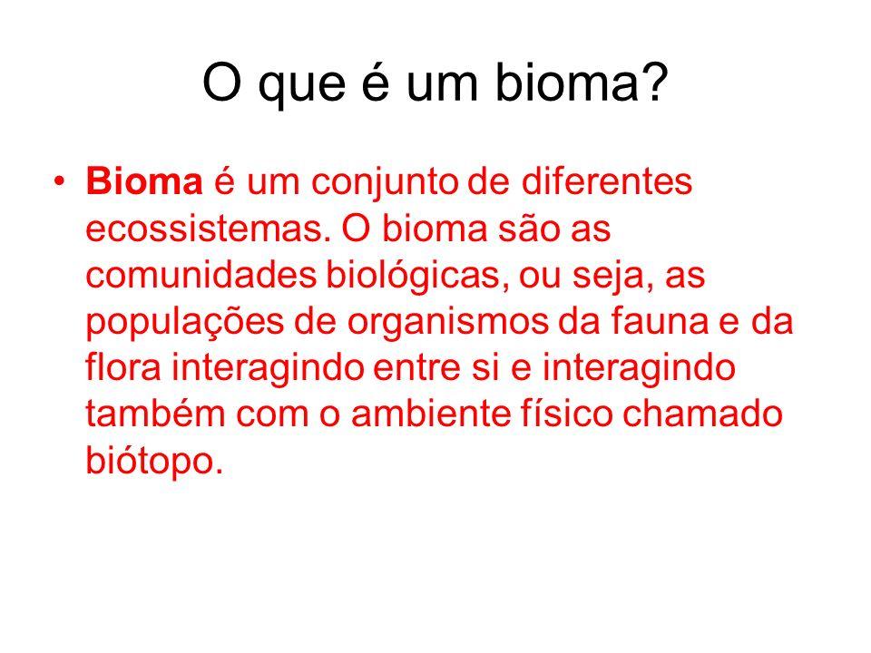 O que é um bioma