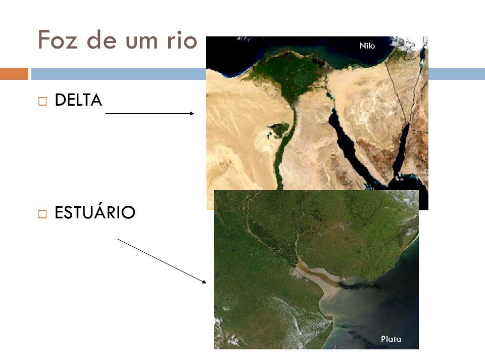 Foz de um rio Nilo DELTA ESTUÁRIO Plata