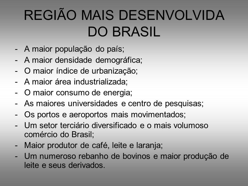REGIÃO MAIS DESENVOLVIDA DO BRASIL