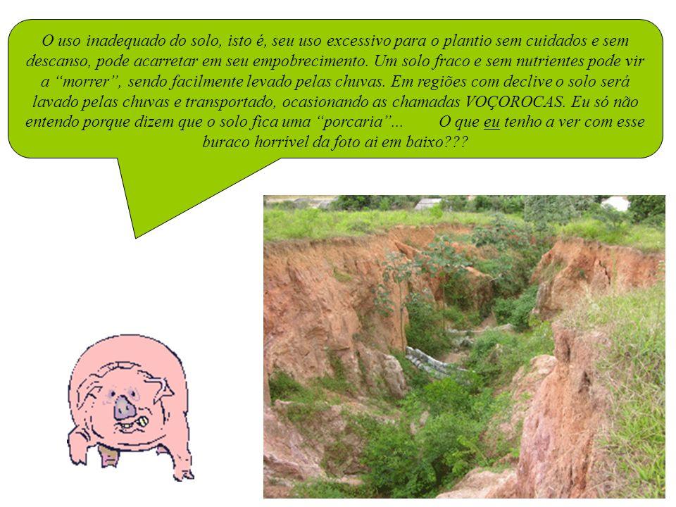 O uso inadequado do solo, isto é, seu uso excessivo para o plantio sem cuidados e sem descanso, pode acarretar em seu empobrecimento.