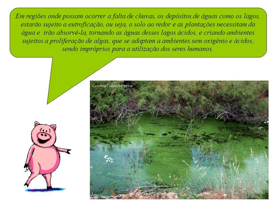 Em regiões onde possam ocorrer a falta de chuvas, os depósitos de águas como os lagos, estarão sujeito a eutroficação, ou seja, o solo ao redor e as plantações necessitam da água e irão absorvê-la, tornando as águas desses lagos ácidos, e criando ambientes sujeitos a proliferação de algas, que se adaptam a ambientes sem oxigênio e ácidos, sendo impróprios para a utilização dos seres humanos.