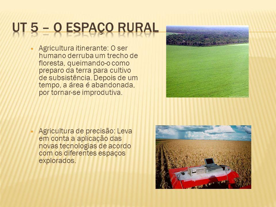 UT 5 – O espaço rural