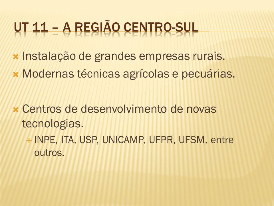 UT 11 – A Região Centro-Sul