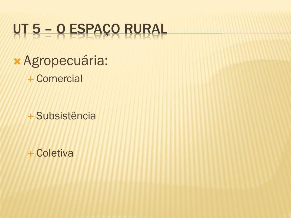 UT 5 – O espaço rural Agropecuária: Comercial Subsistência Coletiva