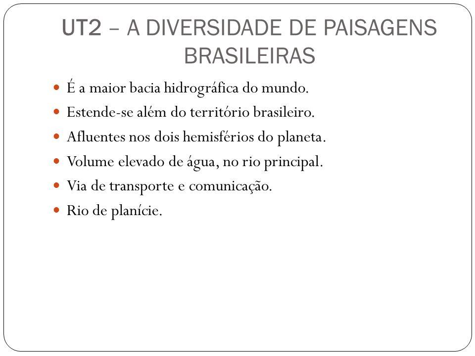 UT2 – A DIVERSIDADE DE PAISAGENS BRASILEIRAS