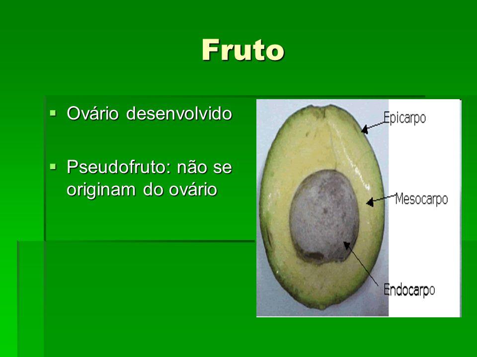 Fruto Ovário desenvolvido Pseudofruto: não se originam do ovário