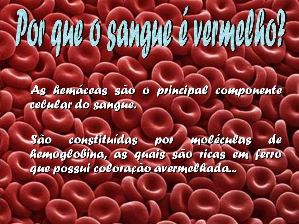 Por que o sangue é vermelho
