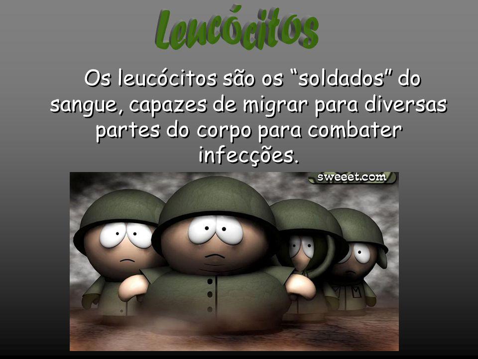 Leucócitos Os leucócitos são os soldados do sangue, capazes de migrar para diversas partes do corpo para combater infecções.