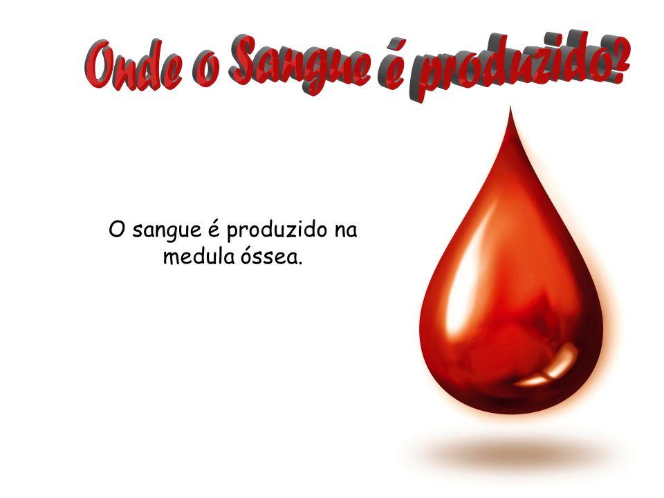 Onde o Sangue é produzido