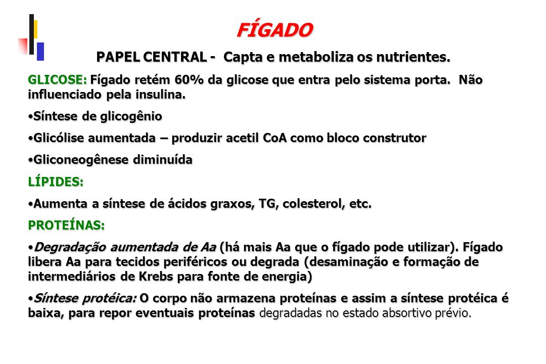 PAPEL CENTRAL - Capta e metaboliza os nutrientes.