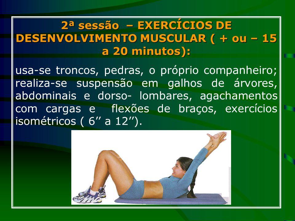 2ª sessão – EXERCÍCIOS DE DESENVOLVIMENTO MUSCULAR ( + ou – 15 a 20 minutos):