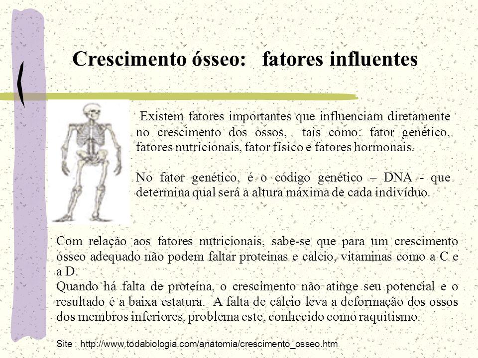 Crescimento ósseo: fatores influentes