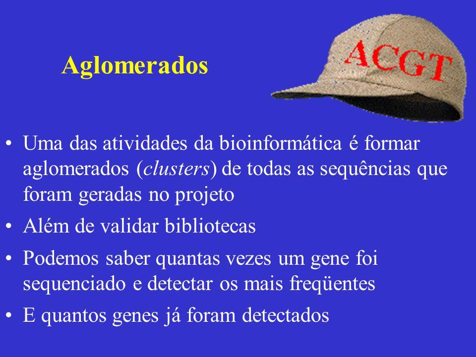 Aglomerados Uma das atividades da bioinformática é formar aglomerados (clusters) de todas as sequências que foram geradas no projeto.