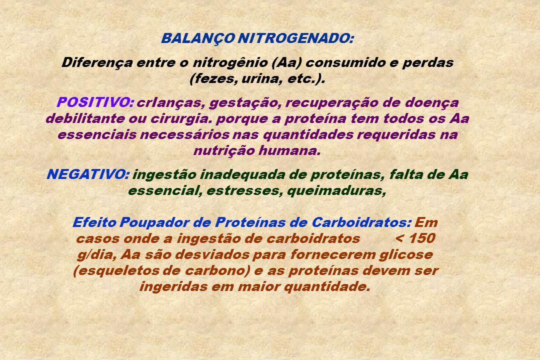 BALANÇO NITROGENADO:Diferença entre o nitrogênio (Aa) consumido e perdas (fezes, urina, etc.).